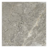 Tundra Gris 12 x 12 in