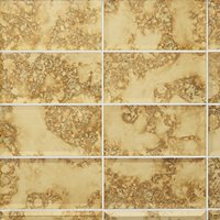Gold Antique Mirror Bevel Glass Subway Wall and Floor Tile - 3 x 6 in