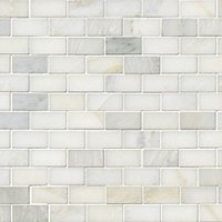 Hampton Carrara Cardine 1 x 2 in