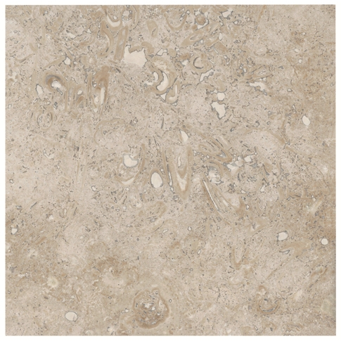 Fossil Honed Filled Travertine Wall and Floor Tile - 12 x 12 in
