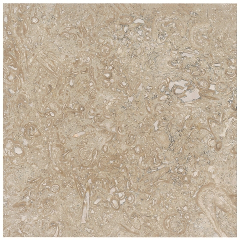 Fossil Honed Travertine Wall and Floor Tile - 18 x 18 in