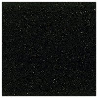 Black Galaxy Granite Floor Tile - 24x24 in.
