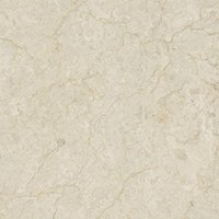 Avorio Fiorito Polished Marble Floor Tile - 18 in