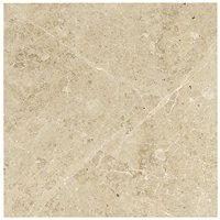 Cappuccino Polished Marble Floor Tile - 18 x 18 in.