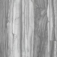 Dexwood Grey Polished Porcelain Wood-Look Wall and Floor Tile - 17 x 35 in
